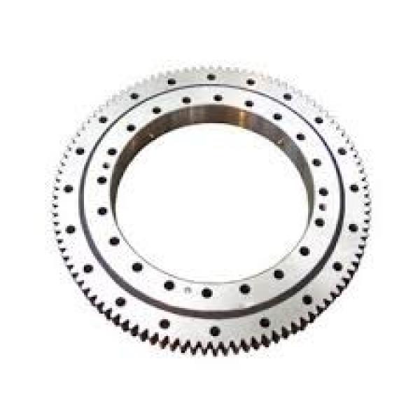 VSI200544-N slewing ring bearings (internal gear teeth) #1 image